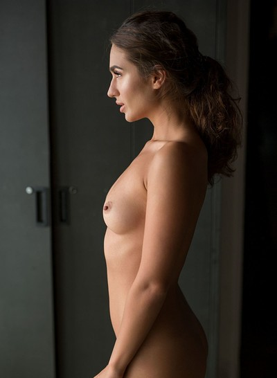 Nicole Winter in Soft Silhouette from Playboy